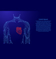 man torso heart in breast medicine health from vector image vector image