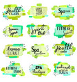set of spa and fitness lettering logos vector image