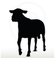 sheep silhouette with walking pose vector image vector image