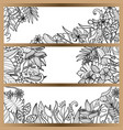 tropical flowers mock up banner set vector image vector image