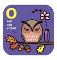 ABC owl oak orchid vector image vector image