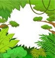 Cartoon Tropical jungle background vector image vector image