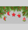 christmas tree branches vector image vector image
