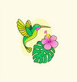 funny colorful hummingbird flying near flower vector image