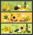 natural oil with ingredient banner for food design vector image vector image