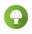 oak tree flat design long shadow glyph icon vector image