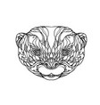 oriental small-clawed otter doodle art vector image vector image