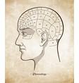 phrenology retro pseudoscience poster or print vector image