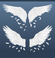 realistic wings white isolated pair angel vector image vector image