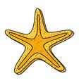scribble starfish cartoon vector image