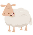 cartoon sheep animal character vector image vector image