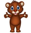 cute baby brown bear cartoon posing vector image vector image