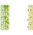 background design with green and golden bamboo vector image vector image