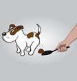 hand with scoop cleans feces after dog vector image vector image