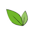 leaves nature plant vector image vector image