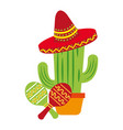 potted cactus mexican hat maracas vector image
