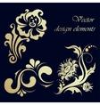 set floral design elements vector image vector image