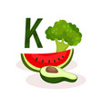 vitamin k food sources slice of watermelon half vector image
