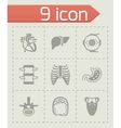 Anatomy icon set vector image