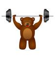 bear weight