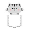 cute gray cat sitting in pocket pink cheeks vector image vector image