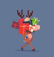 elf holding gift boxes stack over gray background vector image