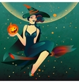 Halloween witch on a broomstick vector image