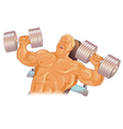 Male body builder vector image vector image