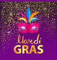 mardi gras carnival mask on vector image