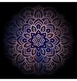 Ornament Mandala on black background vector image