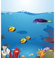 sea landscape illustrating underwater life vector image vector image