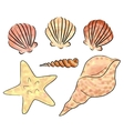 sea shells set vector image