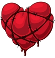 Heart with barbed wire vector image