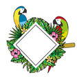 cute tropical parrots cartoon vector image