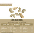 healthy collection cashew vector image vector image