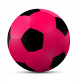 Pink Ball Isolated on White Background vector image vector image