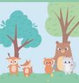 beaver bear deer fox and raccoon animals flowers vector image
