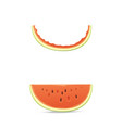 fresh and juicy red watermelon stump and slices vector image