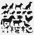 pets silhouettes icons set vector image