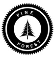pine forest design vector image