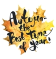 Autumn is the best time of year vector image