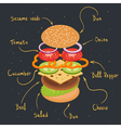 burger infographics vector image