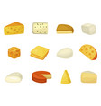 cheese icon set delicious and healthy assortment vector image vector image