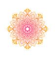 hand drawn floral mandala vector image