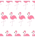 Seamless Pattern Flamingo Exotic tropical bird vector image vector image