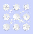 white paper cut flowers - set modern vector image vector image