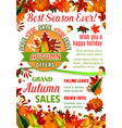 Autumn sale banner of fall season nature template