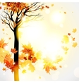 Beautiful autumnal background with tree vector image vector image