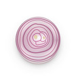 fresh red onion sliced with top view vector image