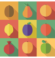 Raw Fruits Icons vector image